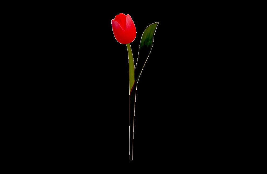 Houten-Tulp-Op-Steel_light-red