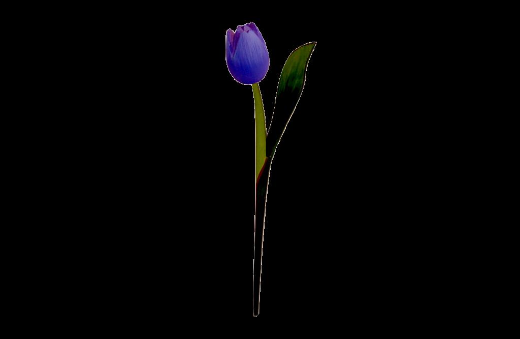Houten-Tulp-Op-Steel_purple
